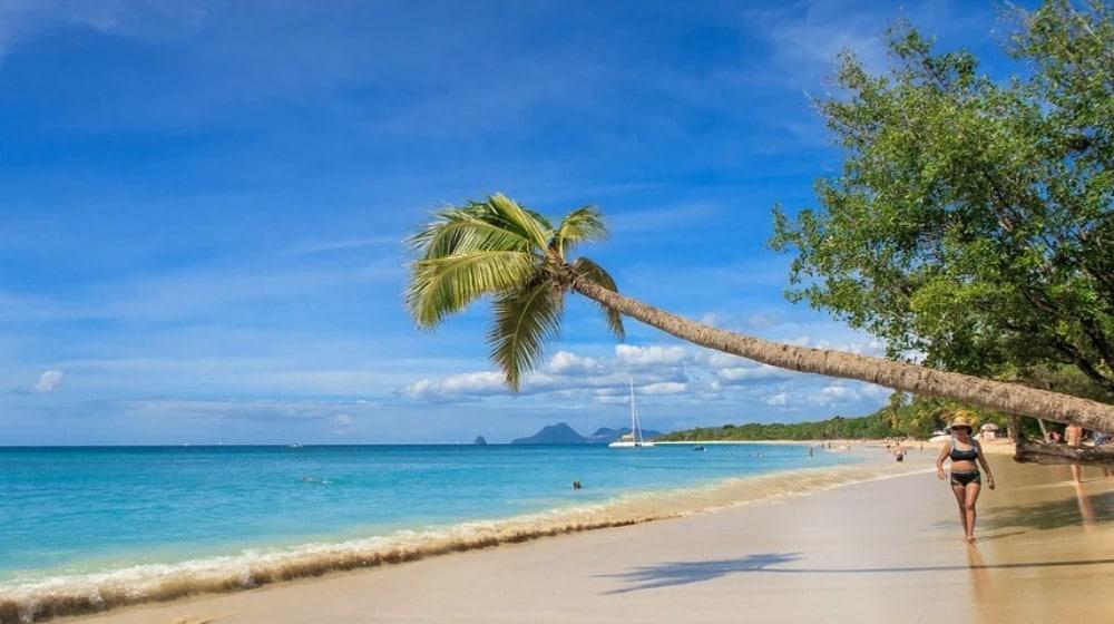Les Trois Plus Belles Plages De Martinique