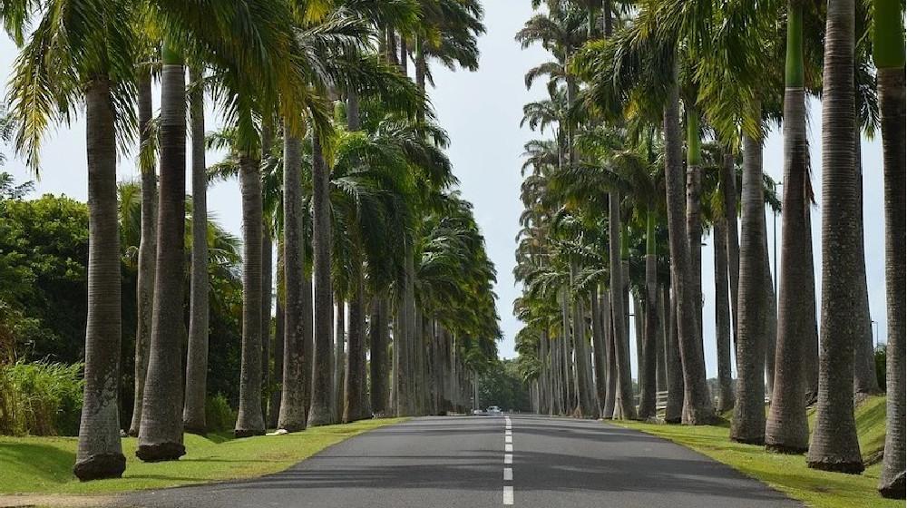 La Route De La Traversée