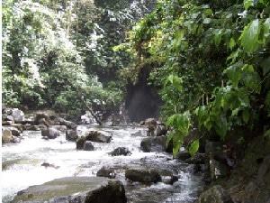 Voiture à proximité en Guadeloupe