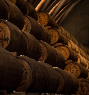 Visite distillerie Martinique
